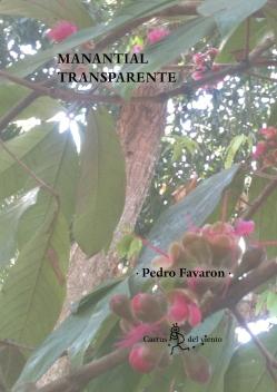 1. Manantial Transparente (2019) Portada HD V2